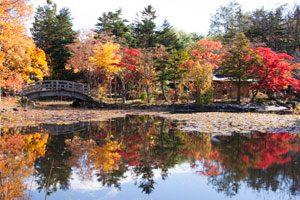 秋の玉泉館跡地公園